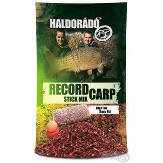 record carp big fish